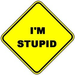 Im-Stupid2